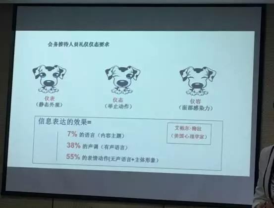 修齐礼仪新城控股第一期接待员礼仪培训