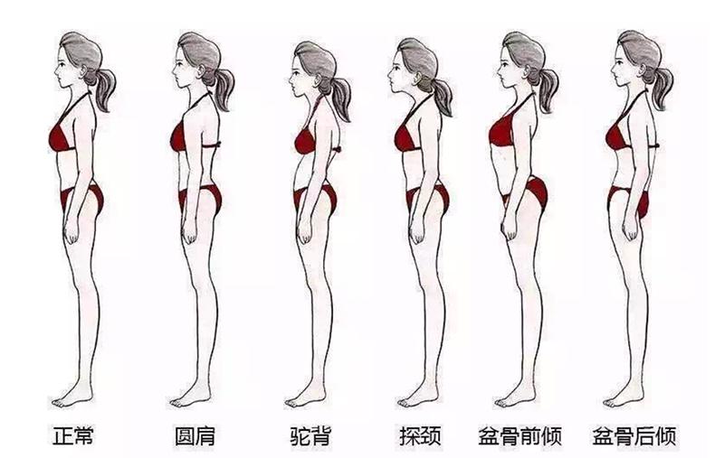 12修齐礼仪行为美学形体礼仪培训班.png
